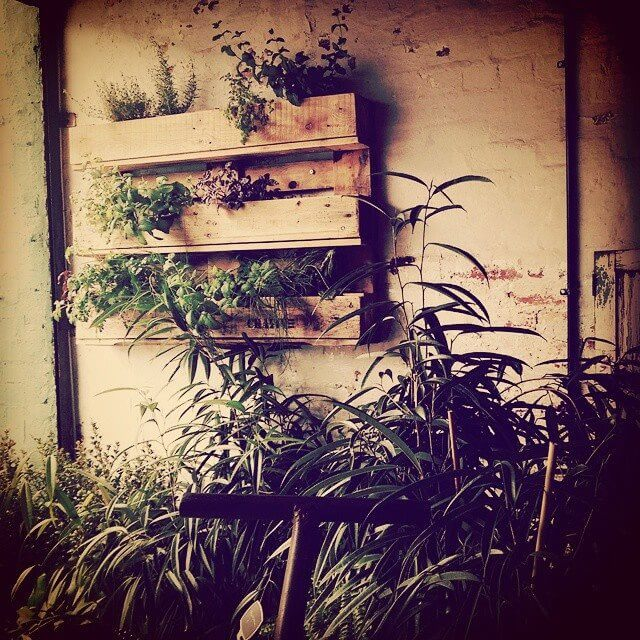 Crative-Pallet-Vertical-Garden-Upcycled-Timber